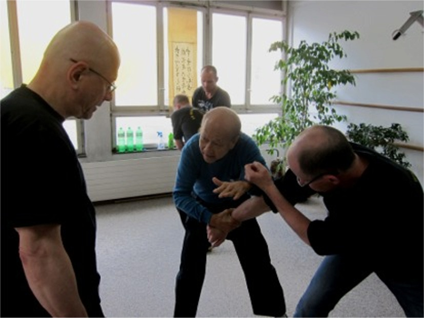 08 Sifu in action